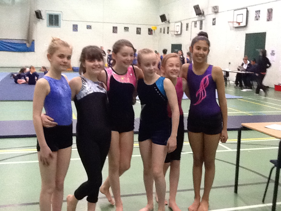 Gymnastics Borough Championships